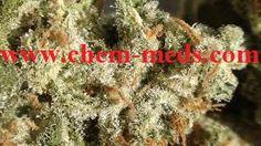 Buy Amnesia Haze Marijuana Sativa - Buy Marijuana Online | Buy Weed | THC and CBD Oil. Medical, Cannabis, Weed, Oil, THC, CBD, Wax, Edibles, Concentrates... Sale. Contact us now: ww.chem-meds.com. Call or Text: +1(214)210 9551