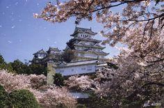 Aux yeux de tous, la floraison des sakuras constitue la meilleure saison pour planifier un voyage au Japon. Le pays entier vit au rythme des bourgeons prêts à éclore. On vous dit tout sur ce phénomène national réputé dans le monde entier: les cerisiers en fleurs.