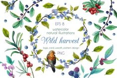 Wild harvest by Eisf