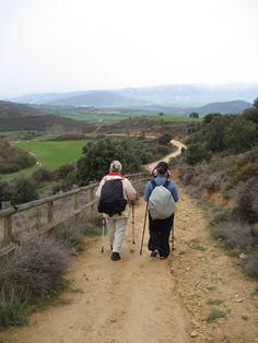 El Camino de Santiago, the way of St. James.
