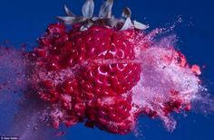Moment of Impact Photography --- High Speed Photography Alan Sailer is a photographer who specializes in blowing things up . By using bullets and high speed photographic techniques he captures some amazing images. High Speed Photography, Fruit Photography, Artistic Photography, Amazing Photography, Splash Photography, Action Photography, Creative Photography, Frozen Strawberries, Mind Blown