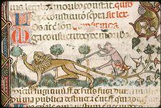 Avignon - BM - ms. 0659