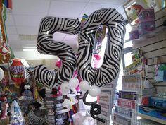 50 zebrato