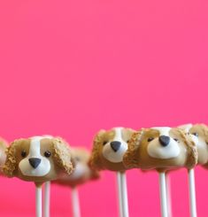 Pink Puppy Party - adorable cake pops