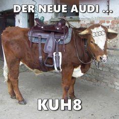 #kuh8