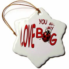 3drose You are My Love Bug Snowflake Porcelain Ornament, 3-Inch > If you love this, read review now : Christmas Decorations