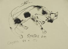 FAMAG 2009.41.1 | Dyson, Julian (1936-2003): Spotted dog, signed and dated 2003, ink, 25 x 34.5 cms. | The Permanent Collection | Falmouth Art Gallery