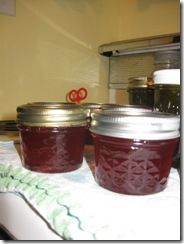 cranberry hot pepper jelly. This stuff is awesome on crackers with cream cheese!