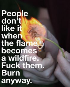 """People don't like it when the flame becomes a wildfire. Fuck them. Burn anyway."" -Erin Van Vuren"
