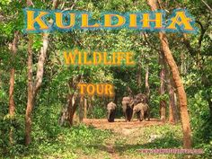 ShakuntalaNivas offers Kuldiha tourism tours on wildlife sanctuary tour in Orissa, Kuldiha forest travel package, book your weekend sanctuaries trip from Panchalingeswar to Kuldiha, find best hotels, cottages, lodge with delicious foods. For more information@ http://shakuntalanivas.com/kuldhia.html