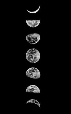 ... spaces ideas lunar phases black and white moon phases art moon moon