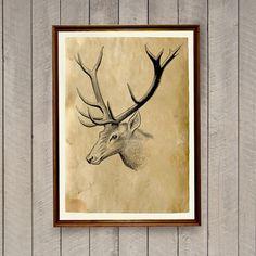 Deer print Rustic home decor Animal art poster AK687 by artkurka