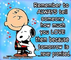 I love you. Charlie Brown Quotes, Charlie Brown And Snoopy, Meu Amigo Charlie Brown, Peanuts Quotes, Snoopy Quotes, Snoopy Love, Snoopy And Woodstock, Cute Quotes, Funny Quotes