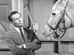 Wilbur Post and Mr. Ed  Loved the reruns when I was little. Poor Wilbur--his wife never understood his love for Mr. Ed!!!