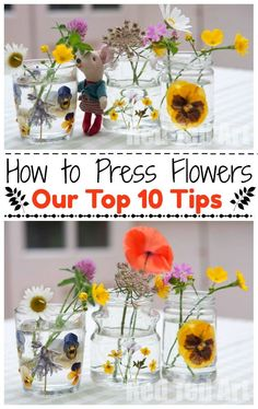 How To Press Flowers - Pressing flowers is a wonderful Spring and Summer Craft for kids and grown ups alike. We share 10 tops tips for how to press flowers. So very pretty. Great for pressing leaves in Fall too.