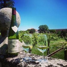 Wijnrondreis Douro Galicië: Galicië ligt in het uiterste noordwesten van Spanje, aan de Atlantische Oceaan en is één van de mooiste gebieden van het groene Spanje. Als wijngebied is het vooral bekend door de Rías Baixas wijn van de Albariñodruif. #Portugal #wijnreis #rondreis #wijn #wijnproeven #Douro #Galicië