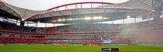 homenagem a Eusébio. Benfica 2 ( Rodrigo e Garay) Porto 0. 12 janeiro 2014