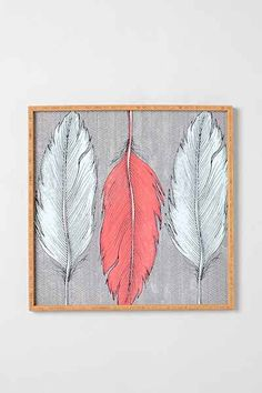 Wesley Bird For DENY Feathered Framed Wall Art - Urban Outfitters