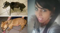Newcastle mother that starved her two dogs, left them to DIE is fined £110! Demand Retrial!   YouSignAnimals.org