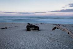 Spiaggia di inverno, legni arrivati dal mare