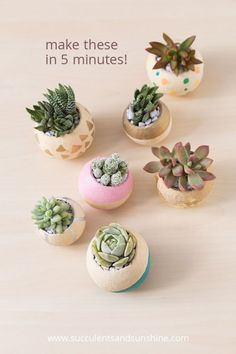 These bell cups are perfect for succulents and are fast and easy to decorate!