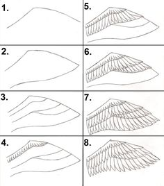how-i-draw-my-wings-202728496