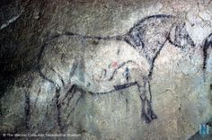"""ekain - magnifique """"caballo"""" Art Pariétal, Paleolithic Art, Paint Brushes, Ancient History, Rock Art, Cave, Paintings, Basque, Stone Art"""