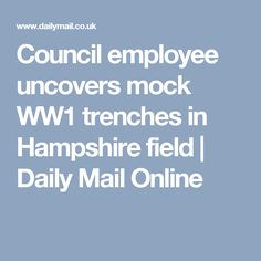 Council employee uncovers mock WW1 trenches in Hampshire field | Daily Mail Online