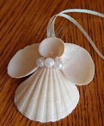 to Make Seashell Christmas Ornaments Sea shell angel - Now I know what to do with some of the shells I collected this summer! LOLSea shell angel - Now I know what to do with some of the shells I collected this summer! Seashell Christmas Ornaments, Coastal Christmas, Angel Ornaments, Christmas Angels, Christmas Fun, Christmas Decorations, Vintage Christmas, Beach Decorations, Beach Ornaments