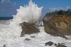 Waves crashing against the cliffs at Shore Acres State Park in Oregon.