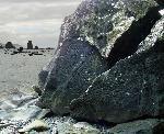 petroglyph - Olympic National Park