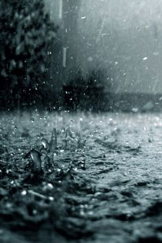 Rain...and then the water danced .... it bounced from every surface and it was full of life and so excited in loving it......
