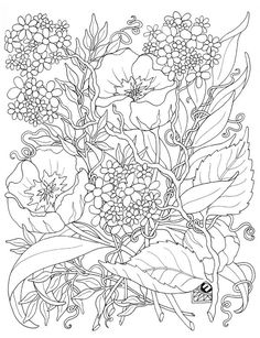 dla-doroslych-kolorowanki-13.jpg (599×780)