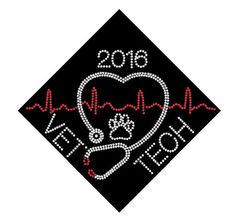 Vet tech graduation cap custom name and date iron on rhinestone transfer bling Choose Color applique decal