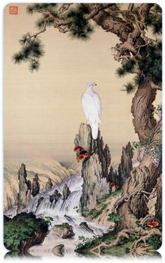The Pine, Hawk and Glossy Ganoderma - Giuseppe Castiglione (Jesuit painter) - Wikipedia Japanese Drawings, Japanese Prints, Japanese Art, Japan Painting, China Painting, Painting & Drawing, China Art, Painting Gallery, Traditional Art