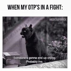 When my OTP is in a fight//Example(s)? Mine: The Mortal Instruments...Jace and Clary fought a lot in the first three books and then things just went to Hell from there...hopefully it will be better.