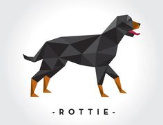 Ronan the Rottie