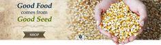 Sustainable Seed Co. - organic & heirloom seeds