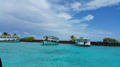 In love with this island. Maldives.