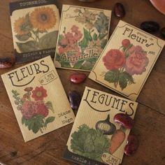 Sachets de graines - cadeaux d'invités mariage - spiritus naturae