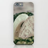 Slim Case iPhone 6 6 Plus 5 4 Samsung Galaxy S6 S5 S4 IPOD Touch Seaweed and Shells Nature Photograph