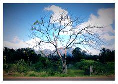 www.southinkk.in - Kanyakumari summer in a few pics