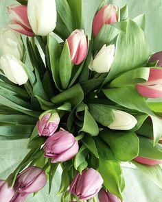 Weekend - thank you @tuulaslife  #tulppaanit #tulips #kukat #flowers #flora #flowerpower #flowerstagram #instaflower #igflower #ig_flowers #petitejoys #lifeisgood #väriterapiaa #lifestyleblogger #nelkytplusblogit #åblogit