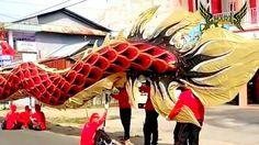 PAWAI NAGA TERPANJANG (178 Meter) Parade Cap Go Meh Singkawang Pontianak...