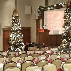 Our Christmas trees have brought our beautiful space to life and made beautiful backdrops to all the many holiday parties and receptions here at The Gathering Place.