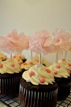 chocolate sour cream cupcakes!