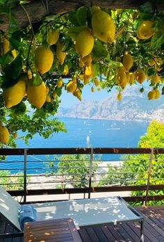 Enjoying the view of the Amalfi Coast from the lemon pergola at the Casa Angelina Hotel in Praiano, Italy 🇮🇹 📷… Vacation Trips, Dream Vacations, Vacation Spots, Beautiful World, Beautiful Places, Beautiful Pictures, Wonderful Places, Amazing Places, The Places Youll Go