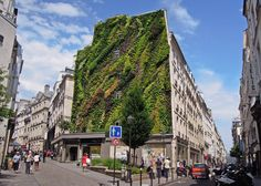 The Oasis of Aboukir green wall by Patrick Blanc for Paris Design Week