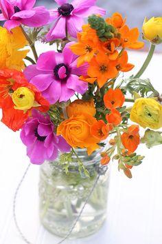 purple orange yellow flowers | yellow flowers