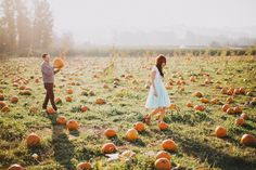sauvie island pumpkin patch engagement session photo
